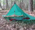 Trekking pole can support a shelter.